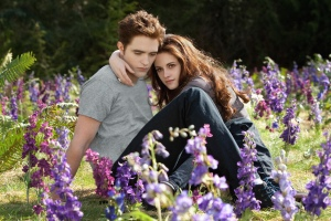 """Robert Pattinson and Kristen Stewart star in """"The Twilight Saga: Breaking Dawn Part 2."""""""